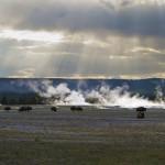 Sun, Steam, & Bison